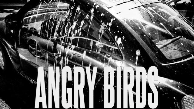 Benjamin Ebel Angry Birds Car